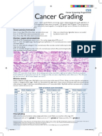 Breast Cancer Grading Poster
