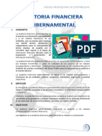 Auditoria Financiera Gubernamental Completo