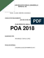 PLAN OPERATIVO ANUAL 2018 IRISterminado - copia.docx