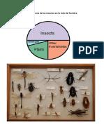 Importancia de los insectos en la vida del hombre.pdf