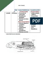 EJES Y PLANOS.docx