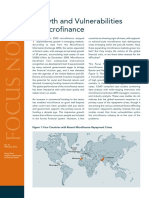 CGAP Focus Note Growth and Vulnerabilities in Microfinance Feb 2010.Pdf1