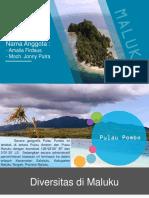 5. Maluku