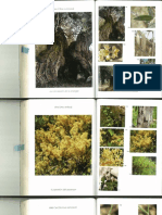 CB Imagen 99 - 195.pdf