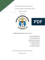 Investigacion de pasto Napier. Grupo morado.pdf