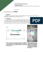 Roteiro_da_5a._Exp._de_Física_Exp.II_-_Viscosímetro_de_Stokes
