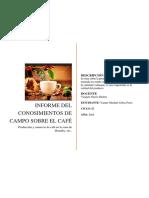 Informe de producción de café en Rodrigues de Mendosa