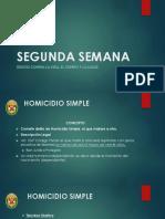291270776 Informe Policial Drogas