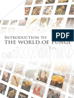 Introduction to the world of FUNGI.pdf