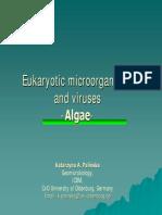 Eukaryotic Microorganisms
