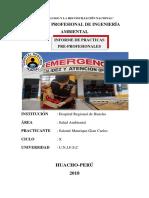 INFORME_PRACTICA_PRE-PROFESIONALES_HRH.docx