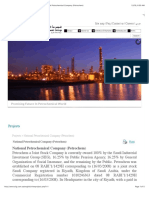 Saudi Industrial Investment Group - Projects National Petrochemical Company (Petrochem)