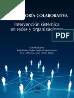 Consultoria Sistemica - Raúl Medina y Otros