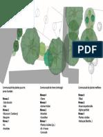Plan Detail Communauté Plantes