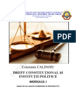 DCIP Constanta Calinoiu.pdf