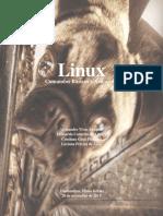 Linux- Do básico ao Avançado