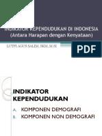 Indikator Kependudukan Indonesia