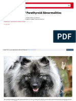Interpretation of Parathyroid Abnormalities