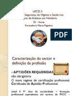 Práticas de Segurança, de Higiene e Saúde nos Serviços de Andares em Hotelaria.pptx