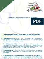 17087CONCEITOS__BASICOS_DE__NUTRICAO_2008_2_(2).ppt
