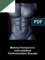 tehnici de mișcare a penisului)
