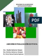 Agroindustrializacion de Pitaya - Claudia Santacruz-Vazquez (1)