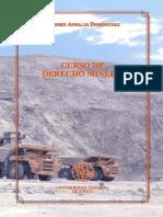 Carmen Ansaldi - Curso de Derecho Minero.pdf