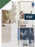 359614125-Georg-Simmel-Sociologia-pdf.pdf