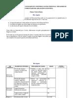 Planificacion Anual CON INDICADORES 2010-2011