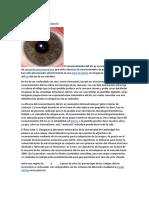 Tecnologias de Autentificacion Biometrica