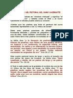 LAS PIEDRAS DEL PECTORAL DEL SUMO SACERDOTE.docx