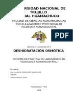 Informe de Laboratorio_deshidratación Osmótica