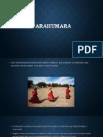 Tarahumara Filosofia