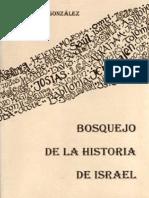 08 Bosquejo de La Historia de Israel - Jorge a. González