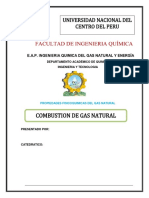 Combustion de Gas 1