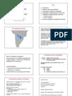 Contacto españo-guaraní.pptx