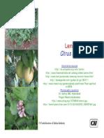 Citrus limon.pdf