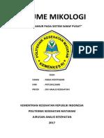 RESUME MIKOLOGI.docx