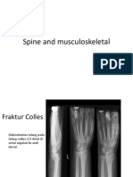 Spine and Musculo