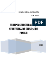 STUDIU DE CAZ-STRATEGIC + STRUCTURALIST