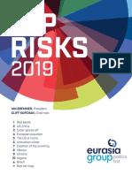 Top Risks 2019 Report