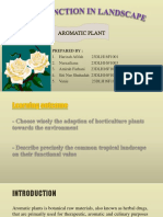 Plant Function in Landscape (PLANT ID)