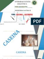 caseinas y caseinatos.pptx