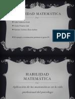 Habilidad matematica