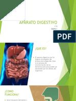 APARATO DIGESTIVO 1E