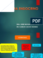 Sistema Endocrino Telesup