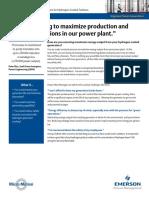 hydrogen purity analyzer.pdf