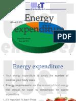 energyexpenditure-160422165403.pdf