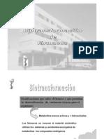 biotransformacion-farmacos