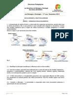 Ficha de Trabalho de Biologia e Geologia 11º Ano Dezembro 2015
